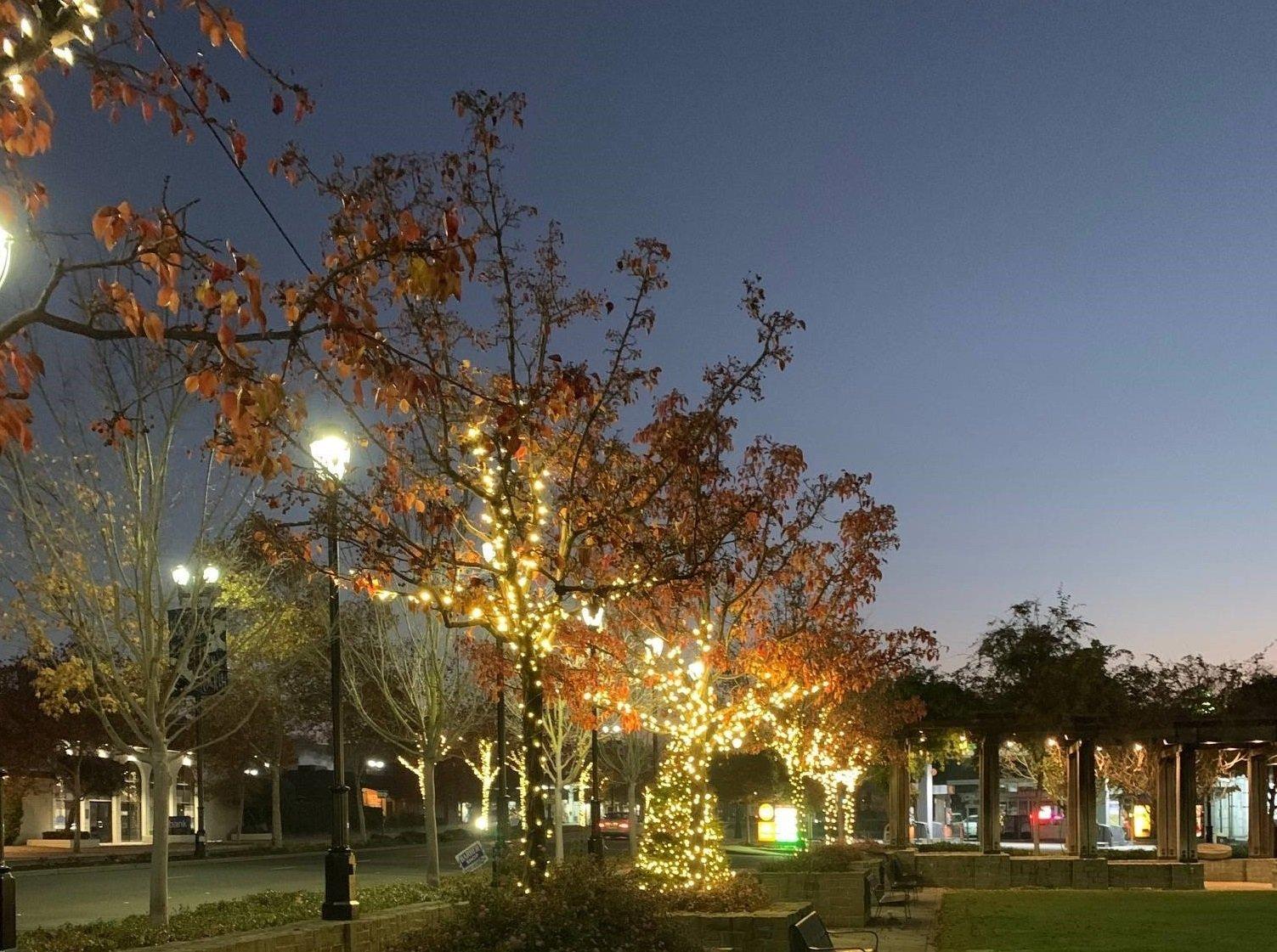 Lafayette Plaza Park - Holiday Lights
